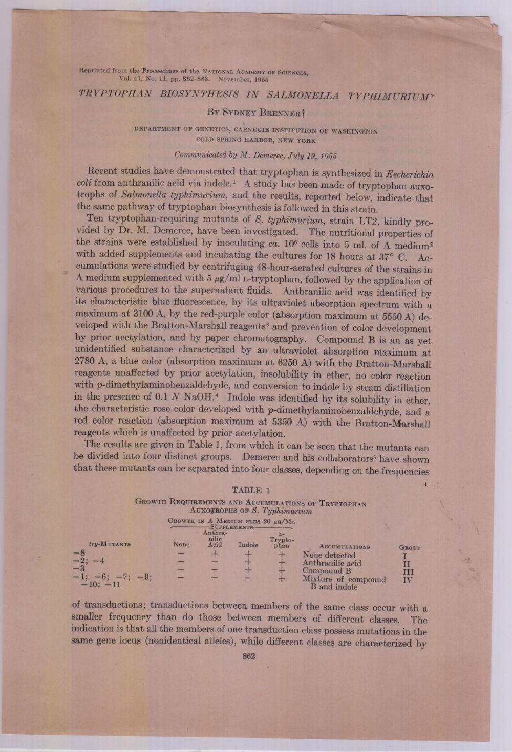 TRYPTOPHAN BIOSYNTHESIS IN Salmonella Typhimurium, Brenner, Sydney
